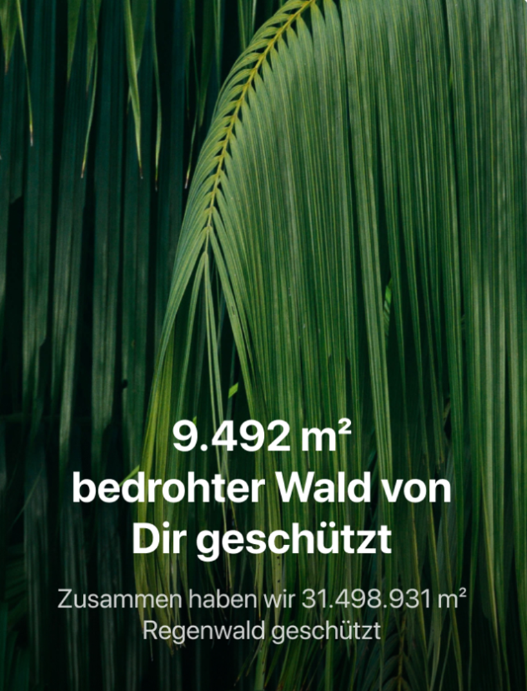 Der Tomorrow Waldschutz